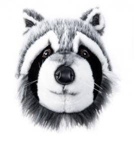 Tvättbjörnshuvud - En cool väggprydnad från Brigbys