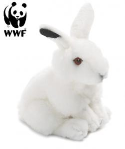 Vinterhare - WWF (Världsnaturfonden)