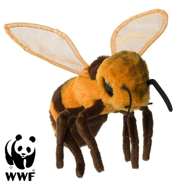 Bi - WWF