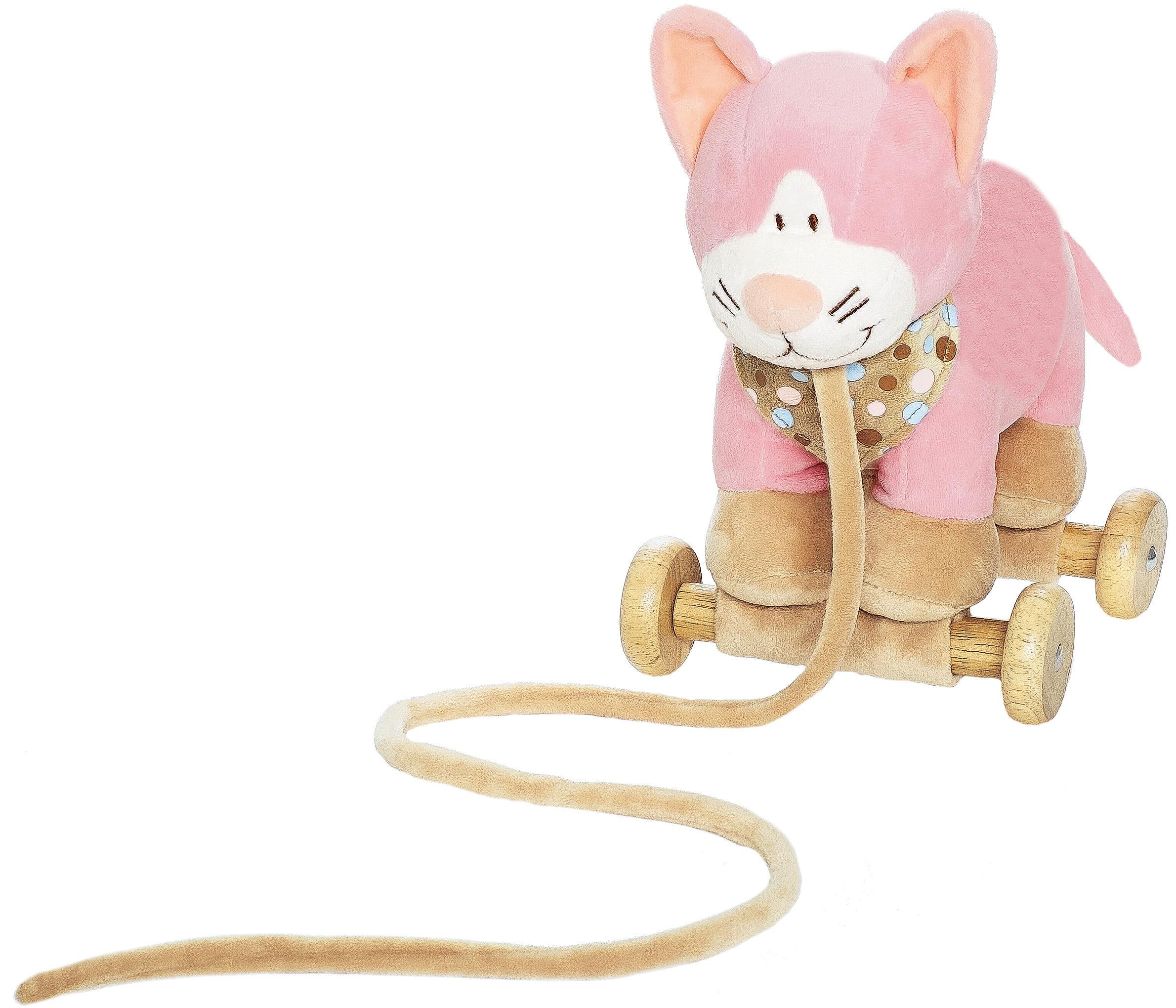 Diinglisar Dragdjur, Katt - Teddykompaniet