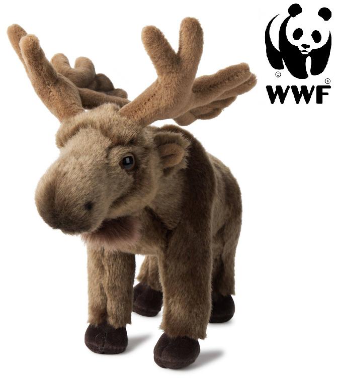 Älg - WWF