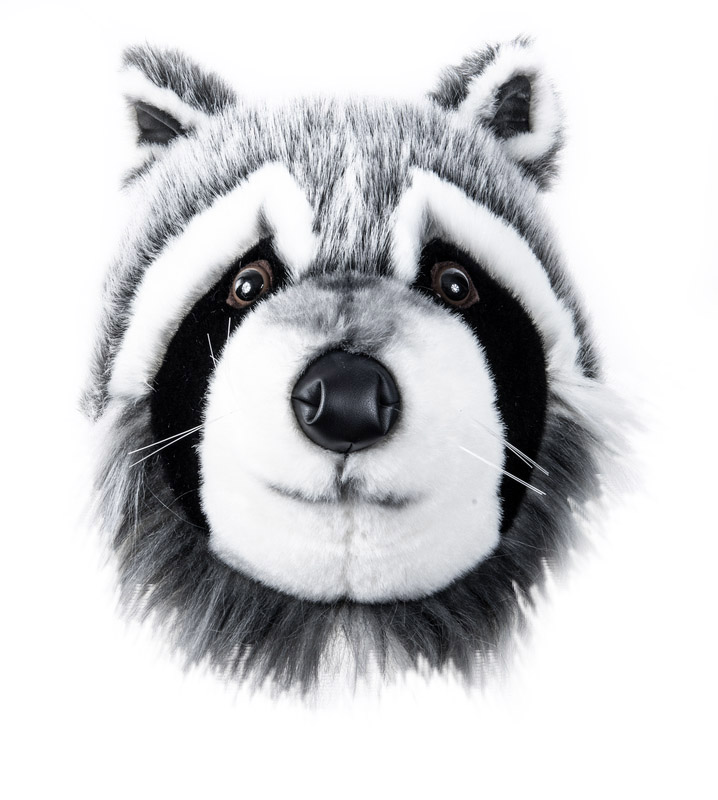 Tvättbjörnshuvud Väggprydnad - Brigbys