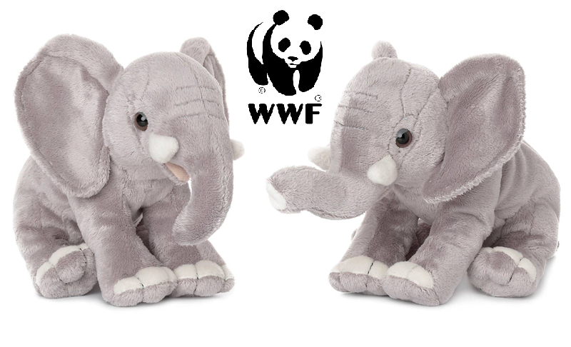 Elefant - WWF