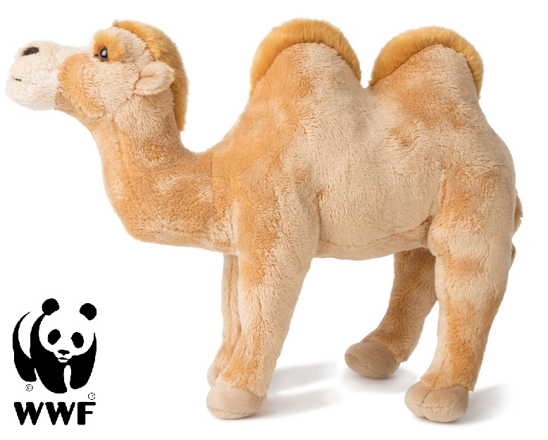 Kamel - WWF
