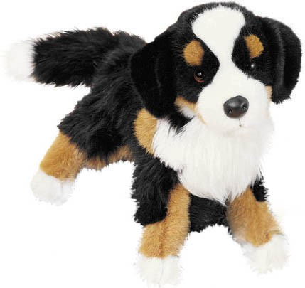 Berner Sennenhund - Douglas Mjukisdjur