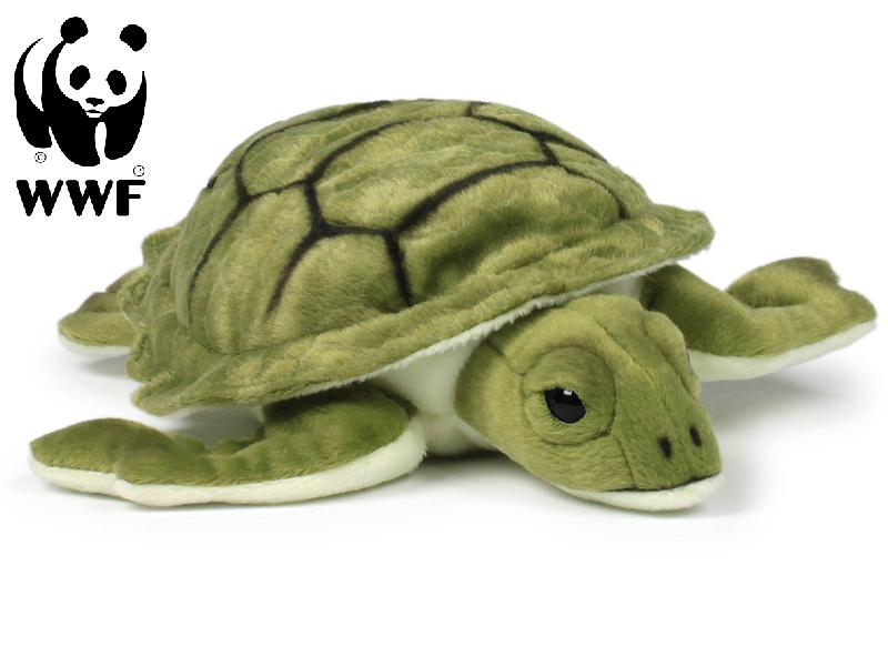 Sköldpadda - WWF