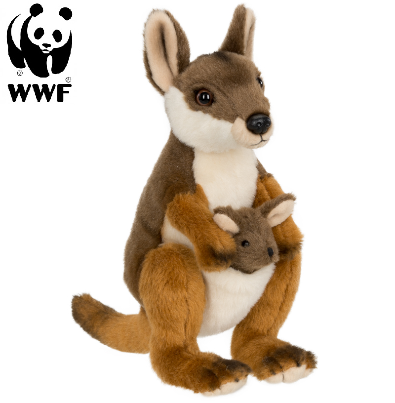Vallaby med baby - WWF