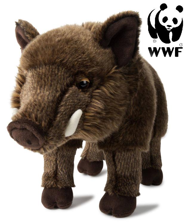 Vildsvin - WWF