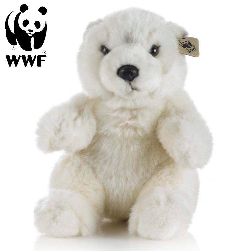 Isbjörn - WWF