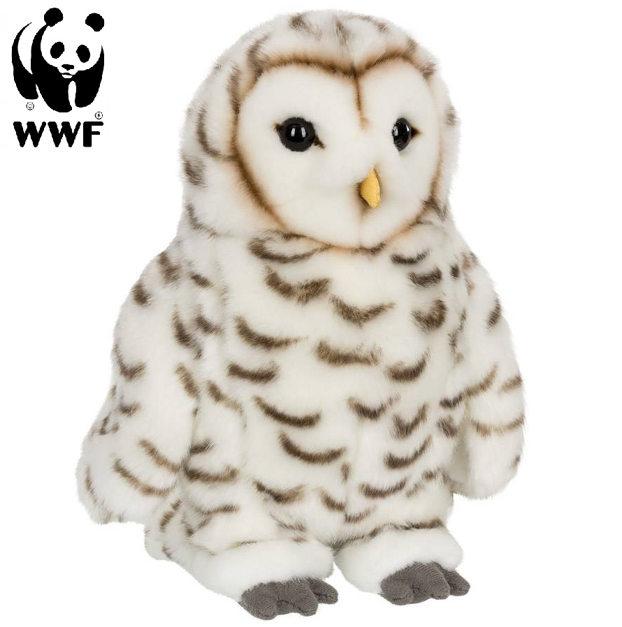 Snöuggla - WWF